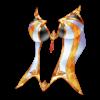 https://www.eldarya.hu/assets/img/item/player//icon/d37cd596d4ba511da83413d44a9e9da2~1437660039.png