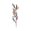 //www.eldarya.hu/static/img/item/player/icon/6191fc97b68cde16981b7df782b6967f.png