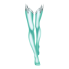 https://www.eldarya.hu/static/img/item/player//icon/8d020e5c237d70c849892702d1676352~1544028752.png
