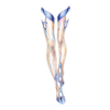 https://www.eldarya.hu/static/img/item/player//icon/9217f48a3a210a94ac65757914f77004~1513001637.png