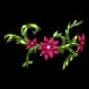 http://www.eldarya.hu/static/img/item/player/icon/c2c65cd79c9594ff2490b1cc56f1158a.png