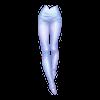 https://www.eldarya.hu/static/img/item/player//icon/f0885ceb150af16b01d6f527635824f1~1539354774.png