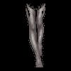 https://www.eldarya.hu/static/img/item/player//icon/f153dce4d19717b010568e01fab2bae0~1539354844.png