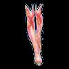 https://www.eldarya.hu/static/img/item/player/icon/f1945314a2b420b93a61cf97ffa2557a.png